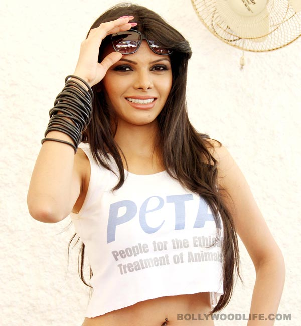 Sherlyn Chopra: I would have been out of work if India was regressive!