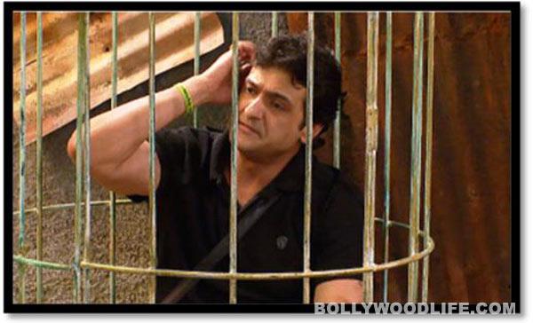 Bigg Boss 7: Why was Armaan Kohli punished?