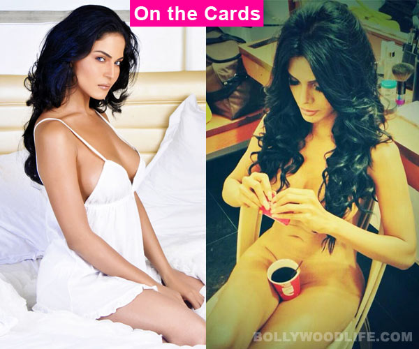 What does the future hold for Veena Malik, Sherlyn Chopra and Lauren Gottlieb?