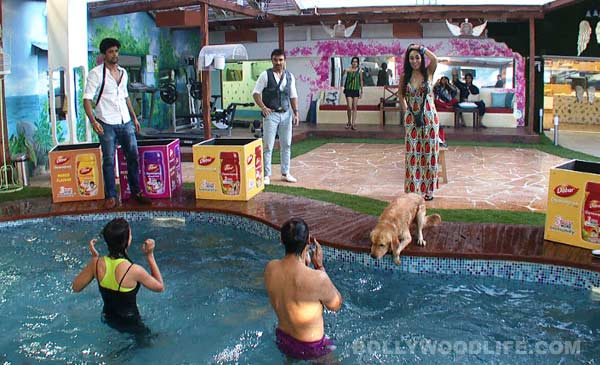 Bigg Boss 7: Should VJ Andy 'finally' become the captain of the house? Vote!