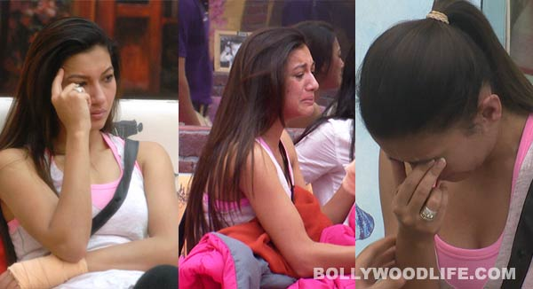 Bigg Boss 7: What got Gauahar Khan teary eyed?