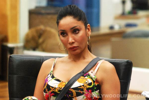 Sofia Hayat: I didn't level sexual assault charges against Armaan Kohli