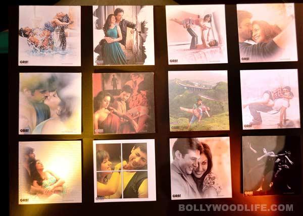 Ravi Dubey-Sargun Mehta, Aamir Ali-Sanjeeda Sheikh feature in GR8! Love Stories Calendar 2014