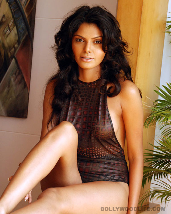 What happened to Sherlyn Chopra's Playboy cover?