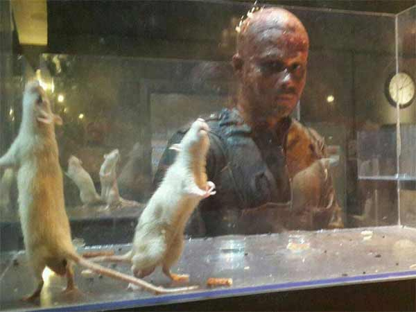 Have you seen Emraan Hashmi's creepy bald avatar from Mr X? : View pic!