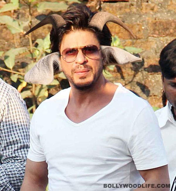 Will Shahrukh Khan celebrate Antarrashtriya Bakra Diwas?