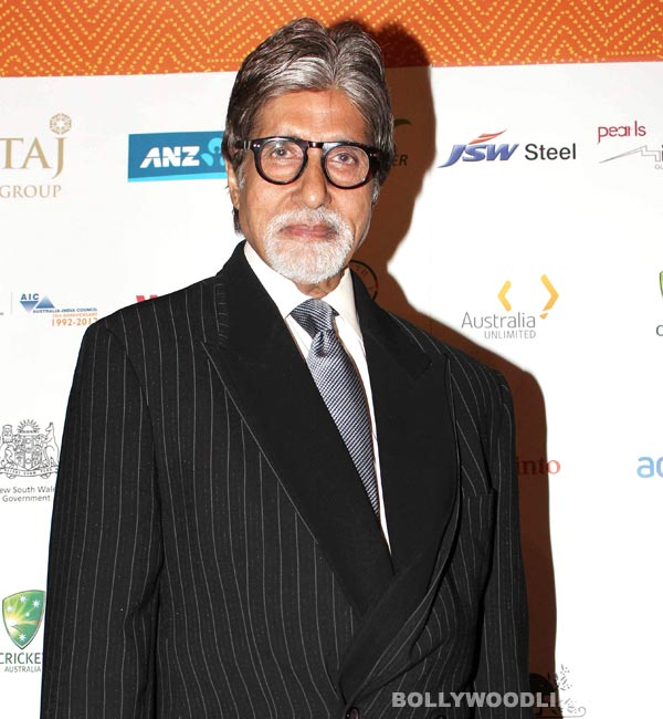 Amitabh Bachchan: A snake in our backyard at Jalsa!
