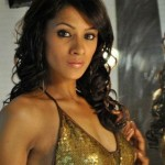 Barkha Bisht Sengupta named the Woman of Box Cricket League series