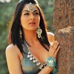 Julie sequel to star newbie Sakshi Chaudhary!