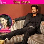 Are Avinash Sachdev and Shalmalee Desai dating?