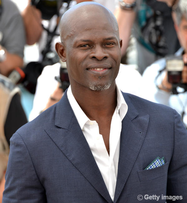 Djimon Hounsou: How to Train Your Dragon 2 gave me new life