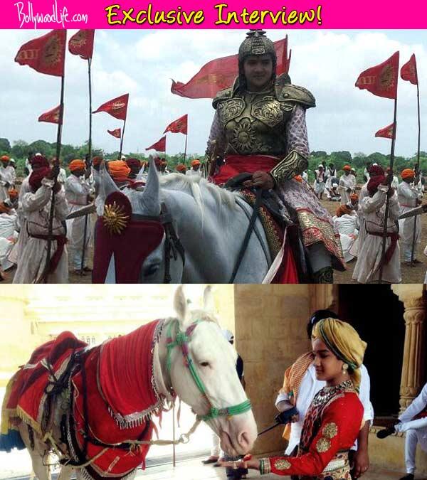 Faisal Khan aka Maharana Pratap: My horse riding and sword fighting skills have improved a lot
