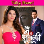Aishwarya Sakhuja's Main Naa Bhoolungi to go off air!