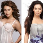 Minissha Lamba, Maryam Zakaria to be in Salman Khan's Bigg Boss 8?