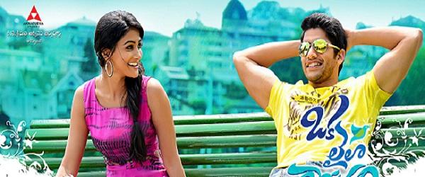 Pooja Hegde: Naga Chaitanya most suitable for romantic films!