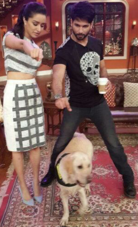 Comedy Nights with Kapil: Kapil Sharma's pet dog entertains Shahid Kapoor and Shraddha Kapoor