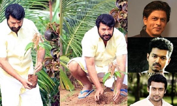 Mammootty challenges Shah Rukh Khan, Vijay and Suriya to take up My Tree Challenge!