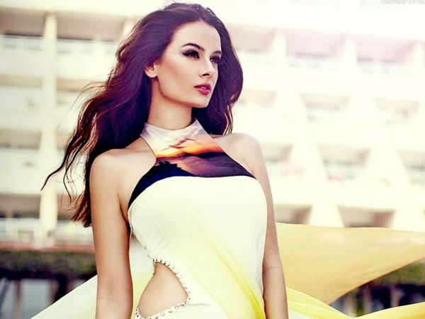 Evelyn Sharma: I am all set to make a reality show!