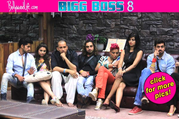 Bigg boss 8 nomination latest celebrity