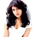Pallavi Sharda: Hawaizaada will prove my versatility