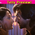 Humsafars: Will Sahir save Arzoo from getting arrested?