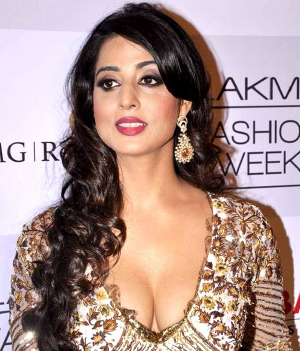 Mahie Gill does an item number for Ganesh Acharya's Hey Bro