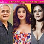 Hansal Mehta, Twinkle Khanna, Divya Dutt upset with Arun Jaitley's Union Budget 2015!