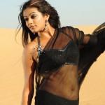 Priyamani to play a cop in Telugu-Kannada bilingual!