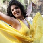 Deeksha Seth to make her debut in Kannada opposite Darshan!