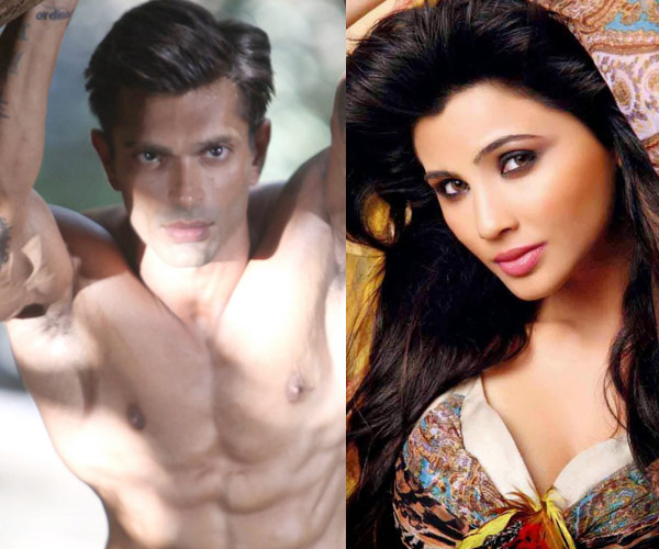 Hate Story 3 to release on December 4!