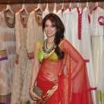 Chak De India actress Vidya Malvade to turn politician for Yaara Silly Silly!
