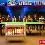 Bigg Boss 9: Rochelle Maria Rao and Vikas Bhalla get SMACKED in their face!