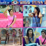 Bigg Boss 9 episode 19: Rochelle Rao sobs lonely after Mandana Karimi calls her selfish, Rimi Sen finds Prince Narula sweet on day 19!