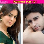 Gautam Rode dating Shraddha Arya?