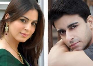 Gautam Rode dating Shraddha Arya?