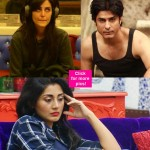 Mandana Karimi, Rimi Sen, Roopal Tyagi - who was the most asocial contestant on Bigg Boss 9?