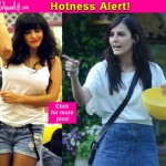 Right from Mandana Karimi, Rochelle Rao to Sunny Leone - take a look at the 10 hottest babes of Bigg Boss over the years!