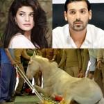John Abraham, Jacqueline Fernandez, Amy Jakcson heartbroken over Police horse Shaktiman's death!