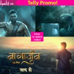 Nagarjuna - Ek Yoddha: Life Ok's new show is based on the mythical Naag Lok of Mahabharata!