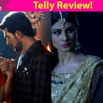 Naagin: Shivanya and Shesha team up again to save Ritik from Kabir's deadly clutch!