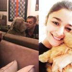 Anushka Sharma, Alia Bhatt, Salman Khan: 20 celebs and their CUTE pets who will brighten up your day!