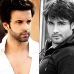 Vivian Dsena and Aamir Ali talk about the 'no-dating' clause