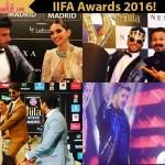 Salman Khan's performance, Shahid Kapoor's donkey ride, Ranveer Singh's antics - looking back at the top 5 highlights of IIFA Awards 2016!