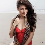 Why Jacqueline Fernandez is tougher competition that she appears to be like?