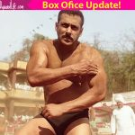 Salman Khan's Sultan collects Rs 500 crore at the worldwide market in just 12 days!