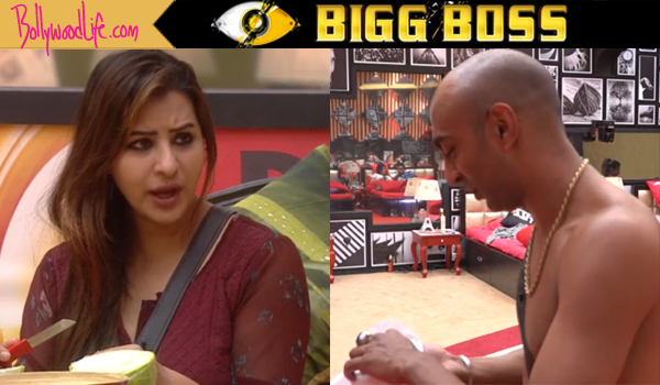 Bigg Boss 11, Day 52 written updates: Arshi Khan's fight takes an ugly turn