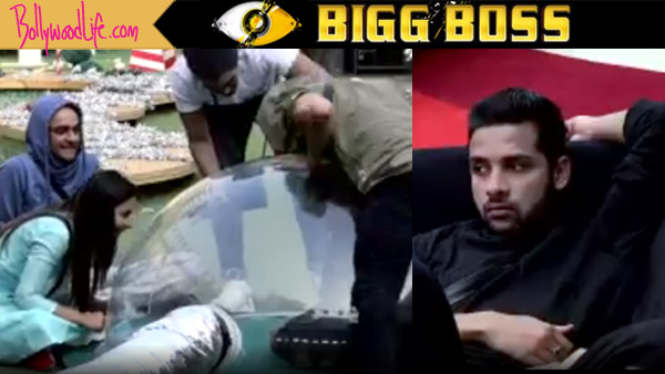 Arshi Khan evicted from 'Bigg Boss 11'