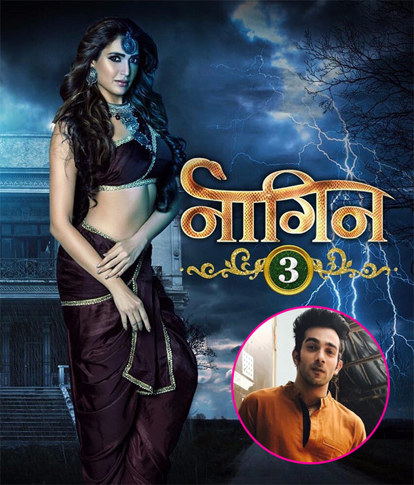Karishma Tanna Bags Naagin 3, First Look Out!
