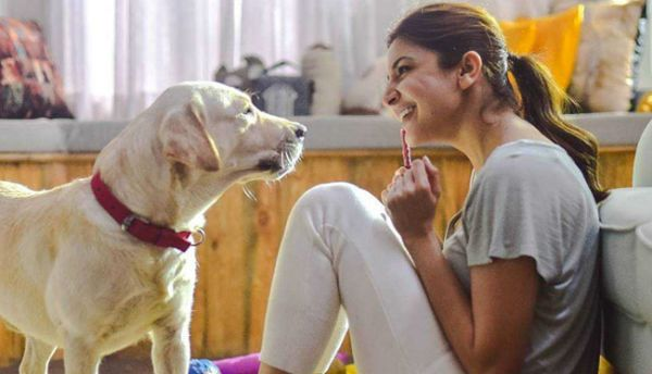On her birthday, Anushka Sharma announces that she is opening an animal shelter just outside Mumbai